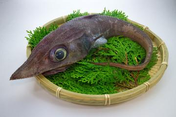 沼津港かもめ丸 深海魚料理